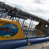 水中観光船「にじいろさかな号」の写真・動画_image_274401
