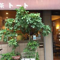 喫茶トートの写真・動画_image_275289