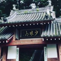 少林山達磨寺の写真・動画_image_277723