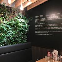 CHINCHOGE CAFE/BARの写真・動画_image_278593