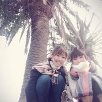 逗子マリーナの写真・動画_image_280941