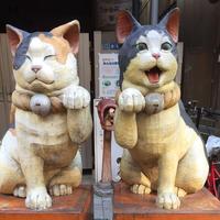 谷中銀座商店街 の写真・動画_image_281250