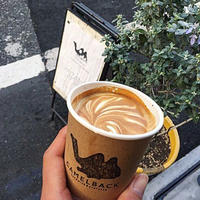 Camelback sandwich&espresso(キャメルバック サンドウィッチ&エスプレッソ)の写真・動画_image_281810