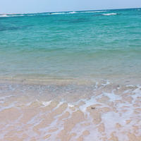土盛海岸の写真・動画_image_285522