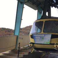宝登山の写真・動画_image_295299