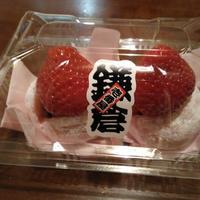 鎌倉の写真・動画_image_302999