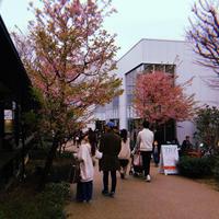 代官山 蔦屋書店(TSUTAYA)の写真・動画_image_306445