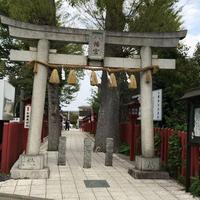 川越八幡宮の写真・動画_image_309924