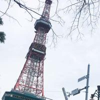 さっぽろテレビ塔の写真・動画_image_314274