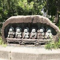 御誕生寺の写真・動画_image_323097