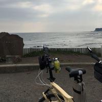 稲村ケ崎の写真・動画_image_326610