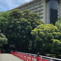 富士屋ホテルの写真・動画_image_330924