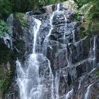 白糸の滝の写真・動画_image_341313
