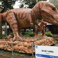 和泉ふれあい会館(道の駅九頭竜)の写真・動画_image_345262