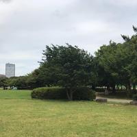 都立潮風公園の写真・動画_image_345813