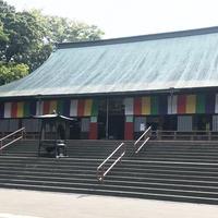 喜多院の写真・動画_image_349085