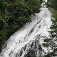 湯滝の写真・動画_image_411819