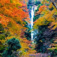 神庭の滝の写真・動画_image_460484