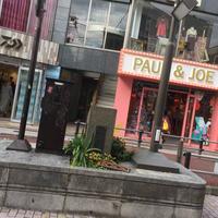 キャットストリートの写真・動画_image_464431