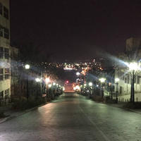 八幡坂の写真・動画_image_469137