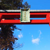 志波彦神社の写真・動画_image_490798
