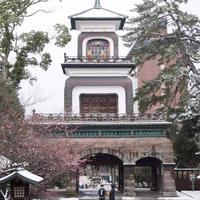 尾山神社の写真・動画_image_507249