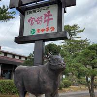 宮崎牛鉄板焼ステーキハウスミヤチクの写真・動画_image_507924