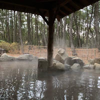 松泉宮の写真・動画_image_509323
