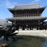 東本願寺(お東さん)の写真・動画_image_521367