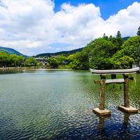 金鱗湖の写真・動画_image_521927