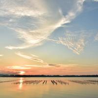 浜名湖の写真・動画_image_522267