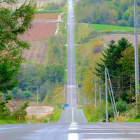 ジェットコースターの路の写真・動画_image_522272