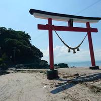 荒平神社の写真・動画_image_522727