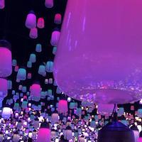 デジタルアート ミュージアム(MORI Building Digital Art Museum: EPSON teamLab Borderless)の写真・動画_image_532745