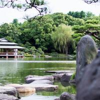 清澄庭園の写真・動画_image_550793