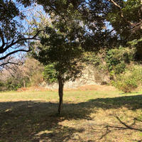 東勝寺跡の写真・動画_image_560231