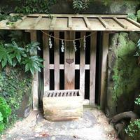 鎌倉宮の写真・動画_image_560250