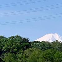 富士山の写真・動画_image_560257