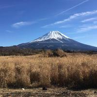 富士山の写真・動画_image_566328
