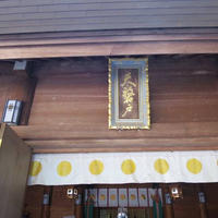 天岩戸神社の写真・動画_image_566576