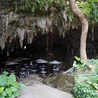 ガンガラーの谷の写真・動画_image_567322