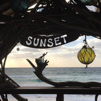 SUN SETの写真・動画_image_568351