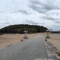 青島の写真・動画_image_570707