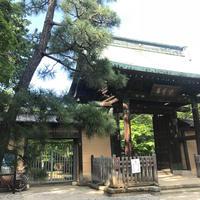 豪徳寺の写真・動画_image_573414