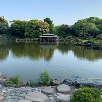 清澄庭園の写真・動画_image_574237