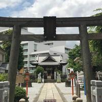 高田総鎮守 氷川神社 (高田氷川神社)の写真・動画_image_579599