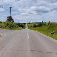 ジェットコースターの路の写真・動画_image_603839