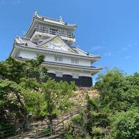 岐阜城の写真・動画_image_606430
