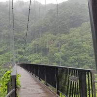 鬼怒楯岩大吊橋の写真・動画_image_608245