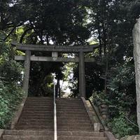 代々木八幡宮の写真・動画_image_623084